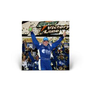 NASCAR: Victory II