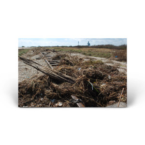 Red Huber: Hurricane Debris