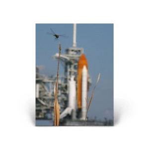 Red Huber: Space shuttle Endeavor on STS-134
