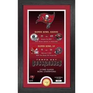 """Tampa Bay Buccaneers """"Legacy"""" Bronze Coin Photo Mint"""