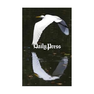 Hampton Roads Scenery: Lake Biggins Egret