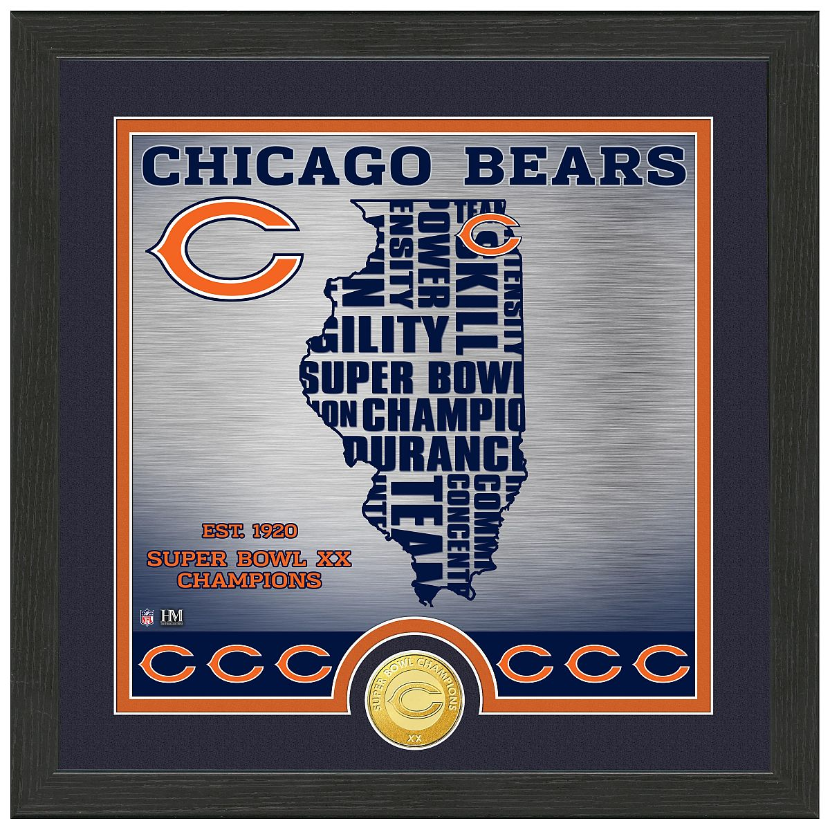 "Chicago Bears ""State"" Bronze Coin Photo Mint"