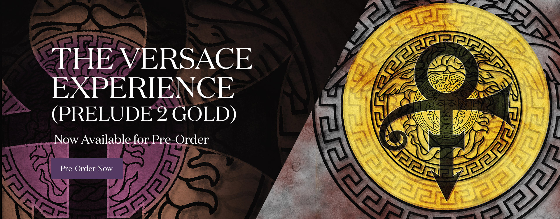 The VERSACE Experience