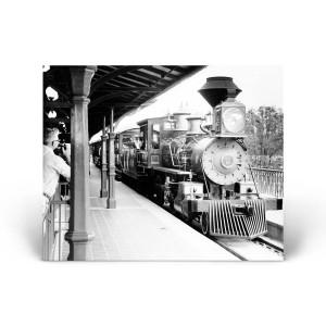 Magic Kingdom: Railroad