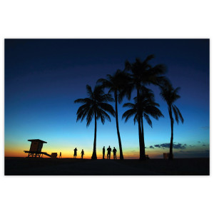 Sunrise & Sunset: Beach Palm Trees
