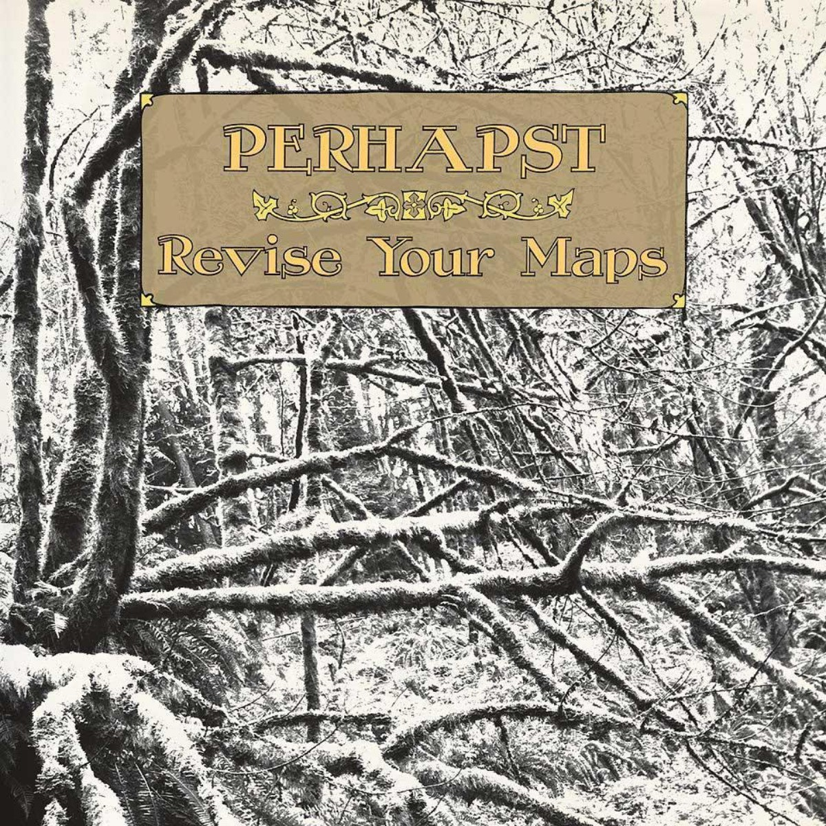 Perhapst 'Revise Your Maps' CD