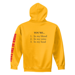 Never Be The Same Hoodie