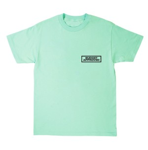 """Father of Asahd """"Budget Approved"""" Mint T-Shirt"""