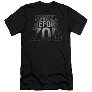 Superman Before Zod T-Shirt