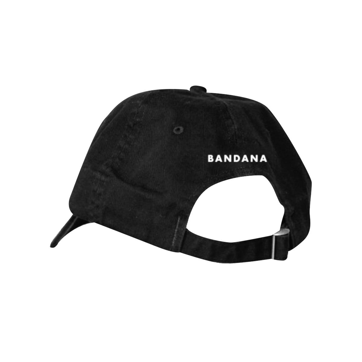 Zebra Dad Hat