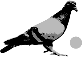Pigeons Playing Ping Pong logo