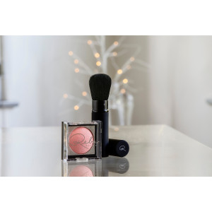 Reba Beauty Glow & Go Illuminating Blush & Retractable Blush Brush