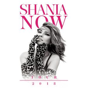 NOW 2018 Tour Poster