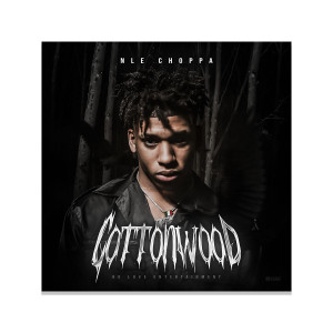 Limited Edition NLE Choppa Autographed Album Cover
