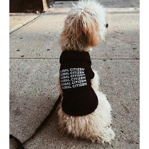 Identity Dog Tee