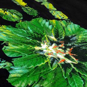 Liberty Organic T-Shirt