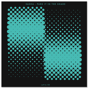 "Park It In The Shade 12"" Single"