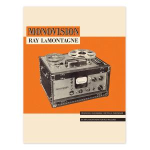 Monovision Poster