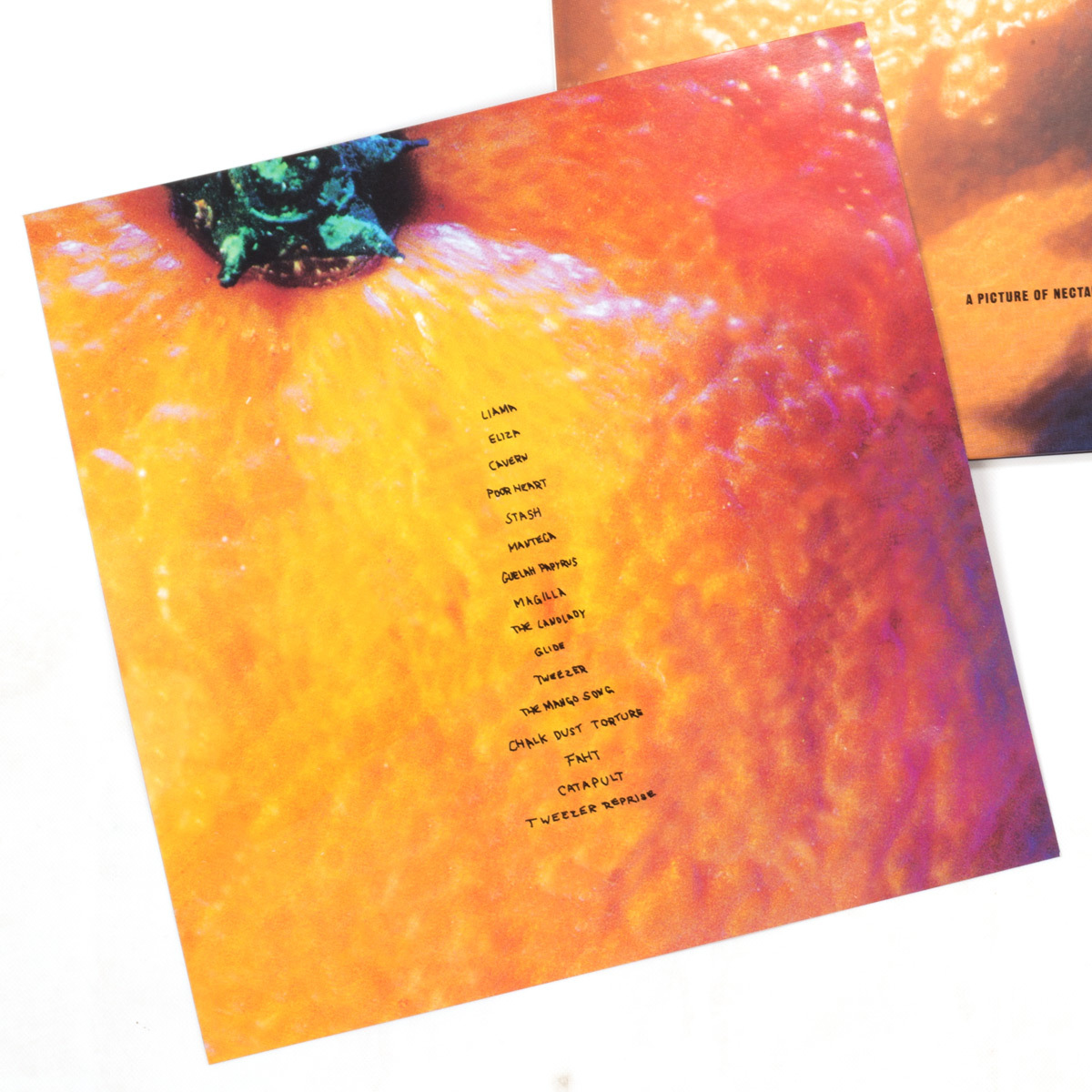 A Picture Of Nectar 2-LP Deluxe Vinyl