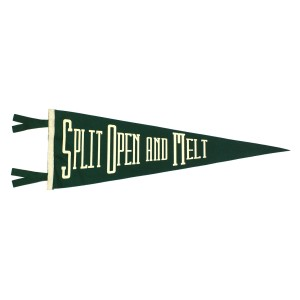Split Open And Melt Pennant