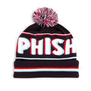 3-D Pom Beanie Knit Hat