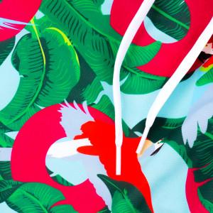 Riviera Maya Macaw Swim Trunks