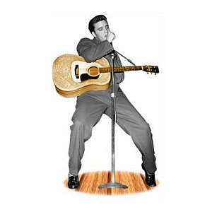 Hound Dog Lifesize Talking Stand Up