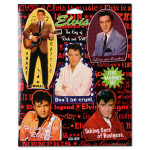King of Rock 'n' Roll Elvis Magnet Set