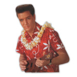 Elvis Presley Blue Hawaii Magnet