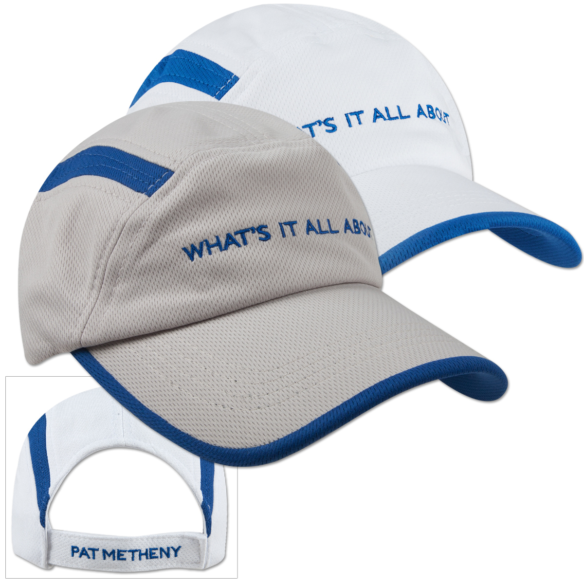 Pat Metheny - What's It All About Hat