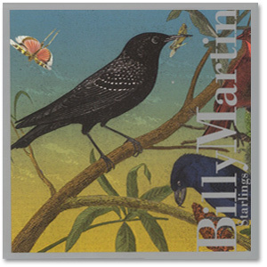 Billy Martin - Starlings CD