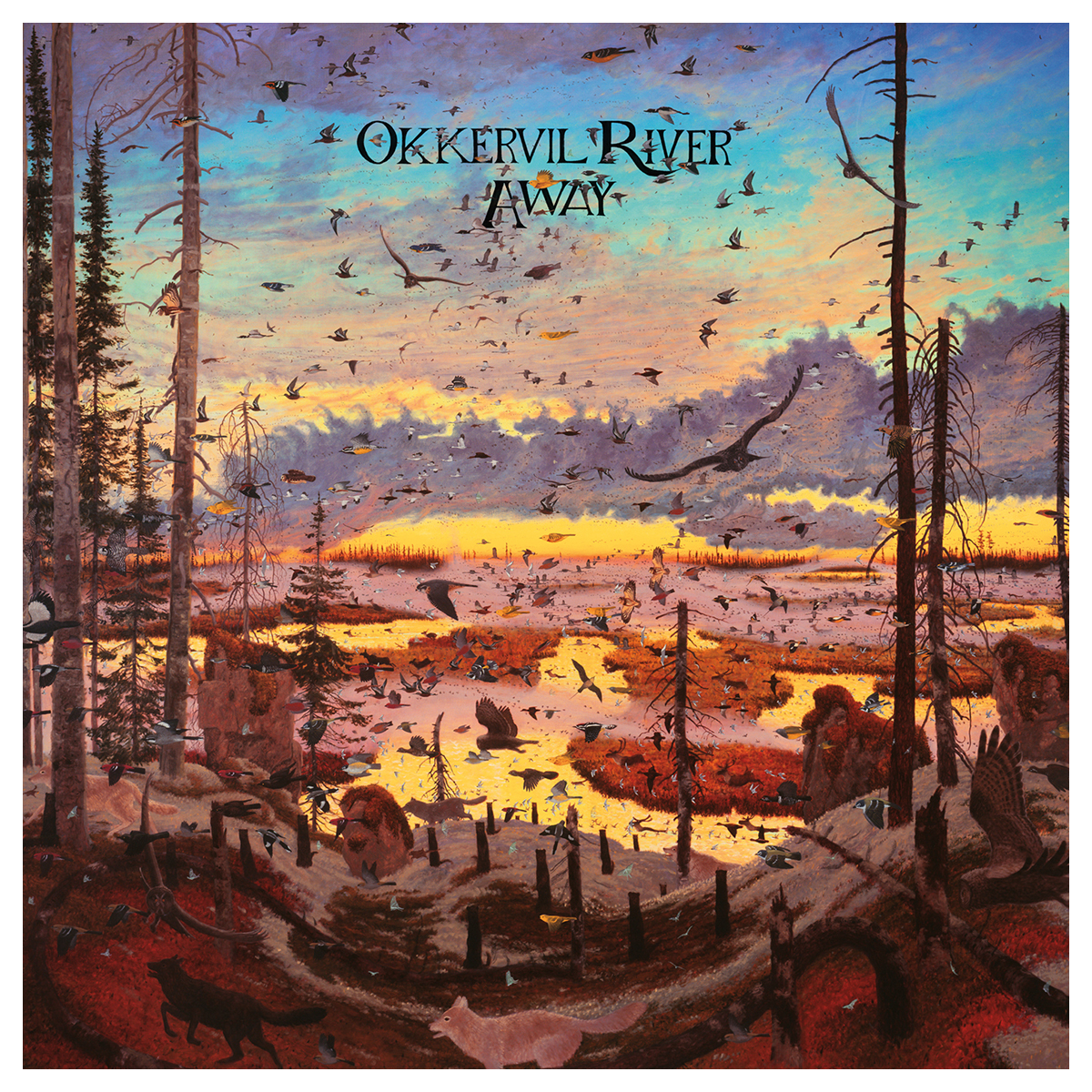 Okkervil River Quot Away Quot Download Shop The Musictoday