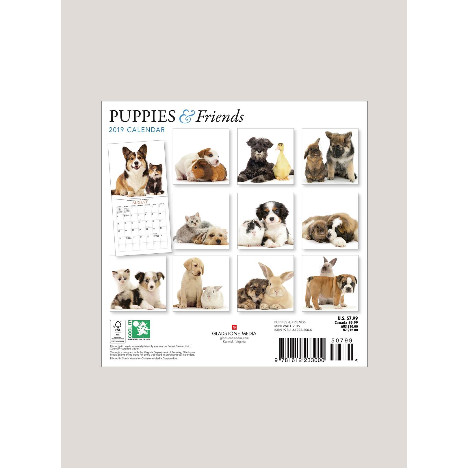 """2019 Puppies & Friends 7"""" x 7"""" MINI WALL CALENDAR"""
