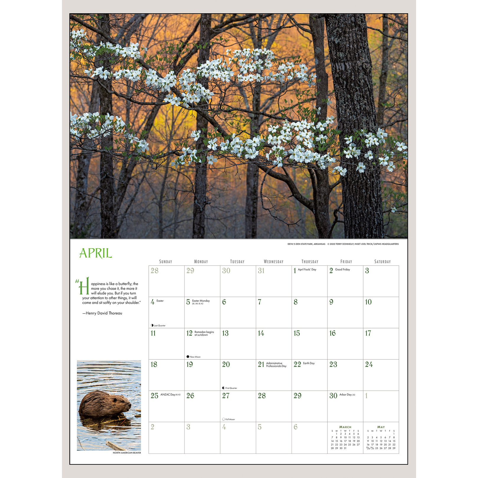 """2021 Into the Woods 18"""" x 12"""" DELUXE WALL CALENDAR"""