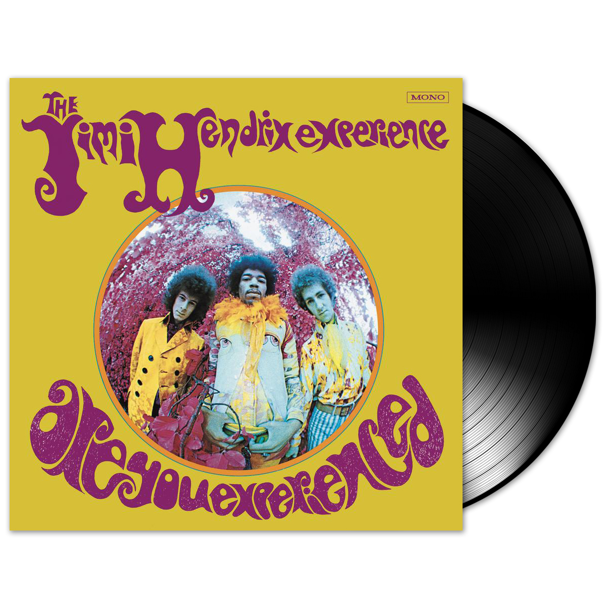Jimi Hendrix Are You Experienced (US Version) LP