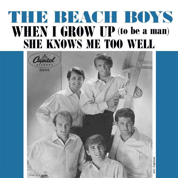 Beach Boys - When I Grow Up (To Be a Man) - MP3 Download