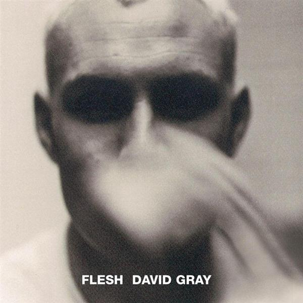 David Gray - Flesh - MP3 Download