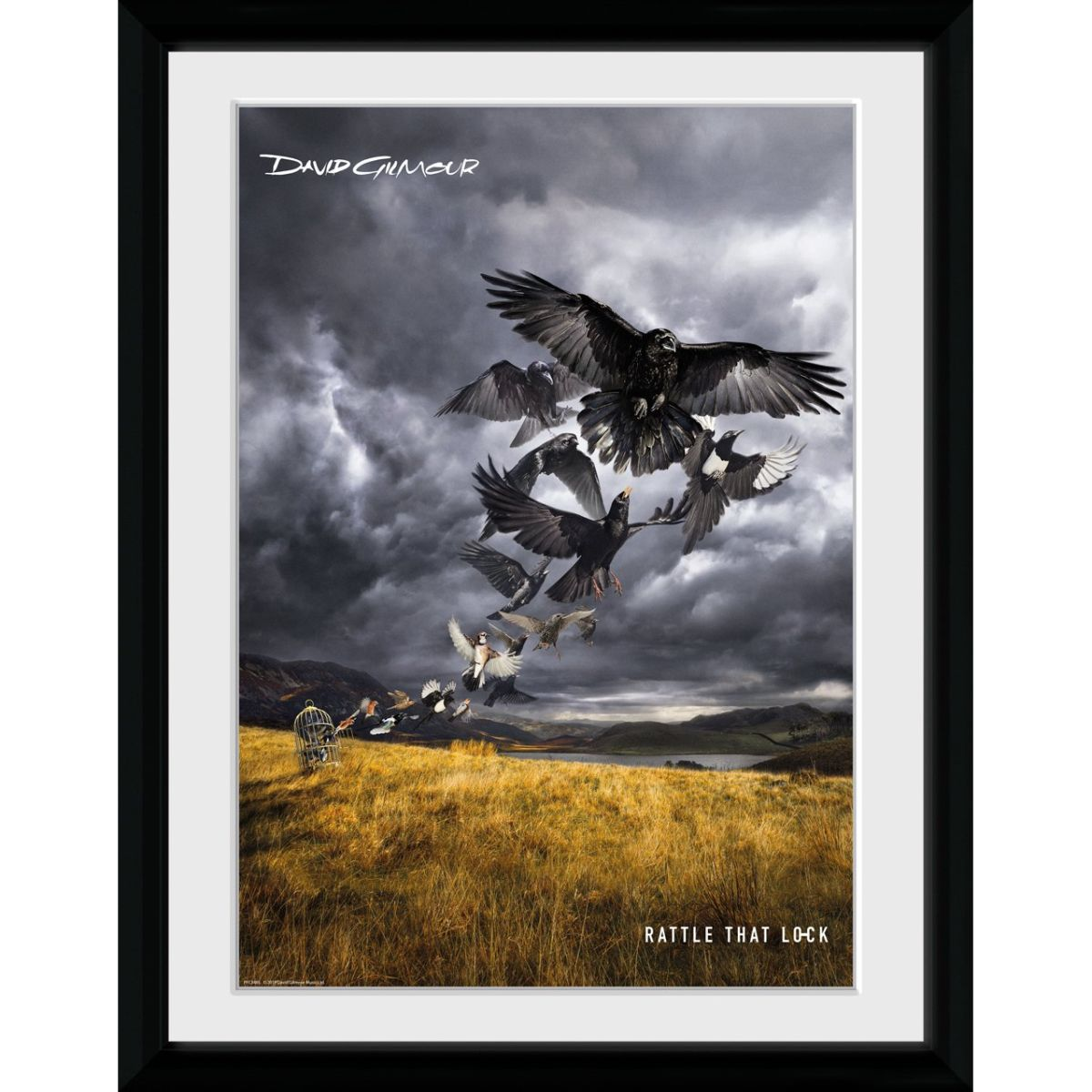 """David Gillmour Rattle That Lock Cover 12"""" x 16"""" Collector Print"""