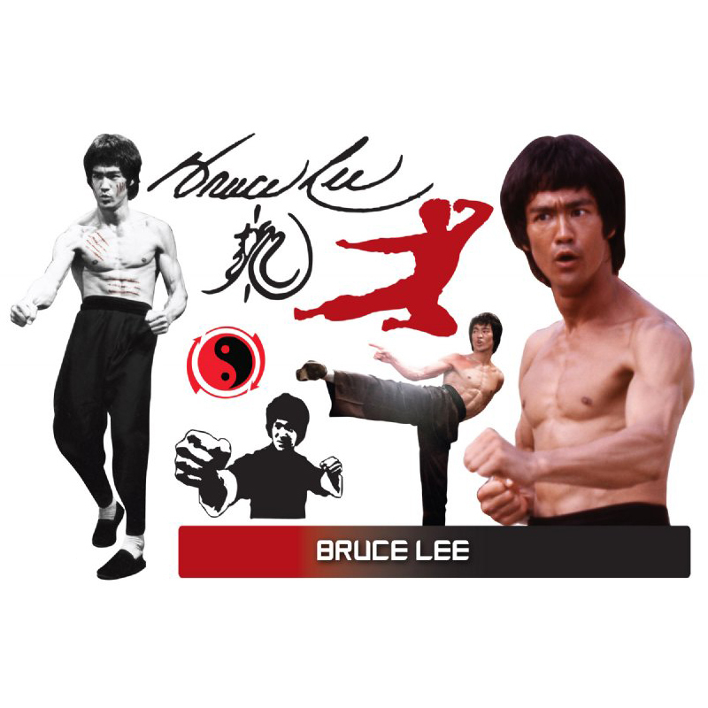 Bruce Lee Assorted WallJammers
