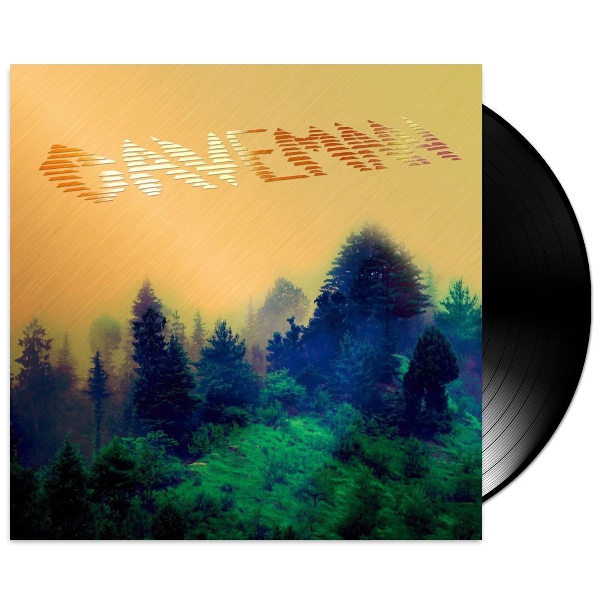 Caveman Vinyl