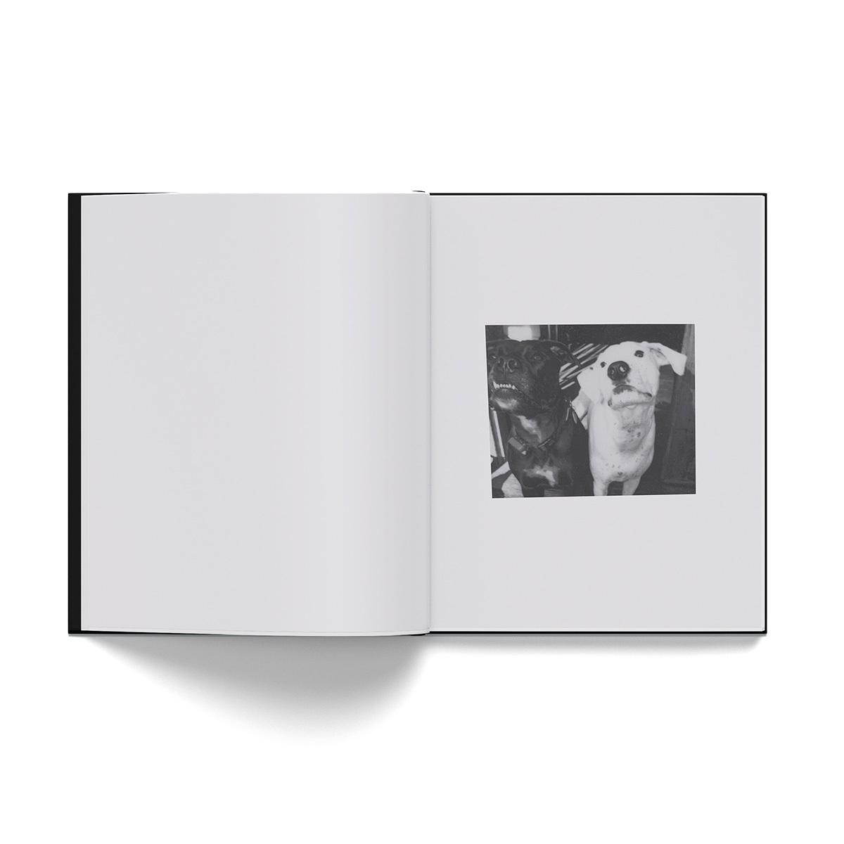 Fetch The Bolt Cutters Deluxe CD Mediabook + Digital Download