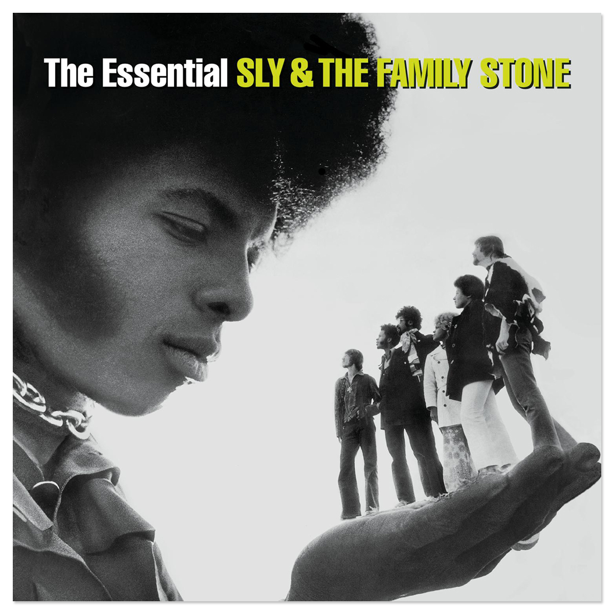 Sly & The Family Stone The Essential Sly & The Family Stone CD