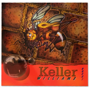 Keller Williams Buzz CD