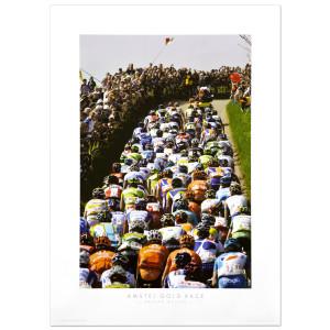 Amstel Gold Poster