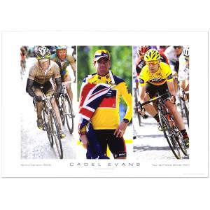 Cadel Evans - Winner Tour de France 2011