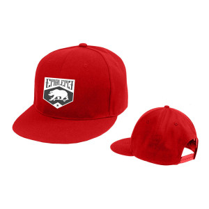 Emblem3 Skateboard Bear Red Hat