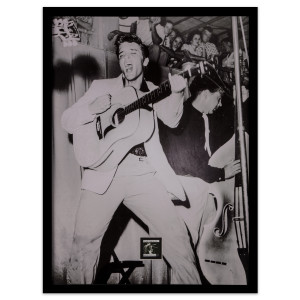"Elvis Presley ""Hound Dog"" Framed Wall Art With Postage Stamp"