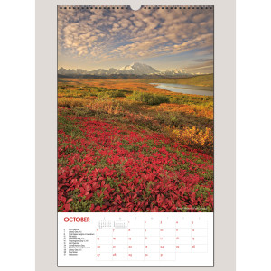 "2019 America's National Parks 12"" x 20"" BIG PICTURE™ CALENDAR"