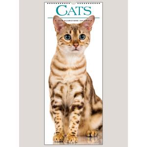 """2019 Cats 9"""" x 22"""" VERTICAL WALL CALENDAR"""