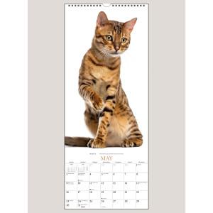 """2021 Cats 9"""" x 22"""" VERTICAL WALL CALENDAR"""